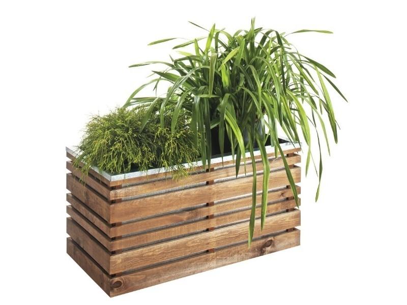 Lign z 100 avec plante