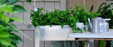 Carrés potagers - Raviday-jardin.com